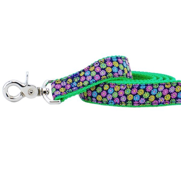 Essential Margaritas Leash