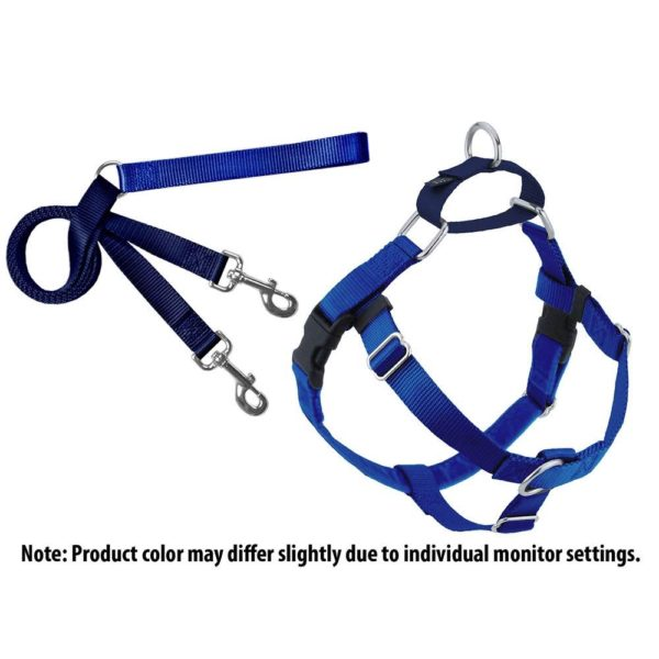 Harness and Training Leash Royal Blue