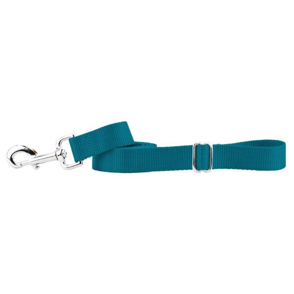 Teal Nylon Dog Leash