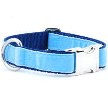 Light Blue/Navy Holiday Velvet Essential Dog Collar