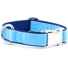 Light Blue/Navy Holiday Velvet Essential Dog Collar