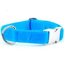 Turquoise Swiss Velvet Essential Dog Collar