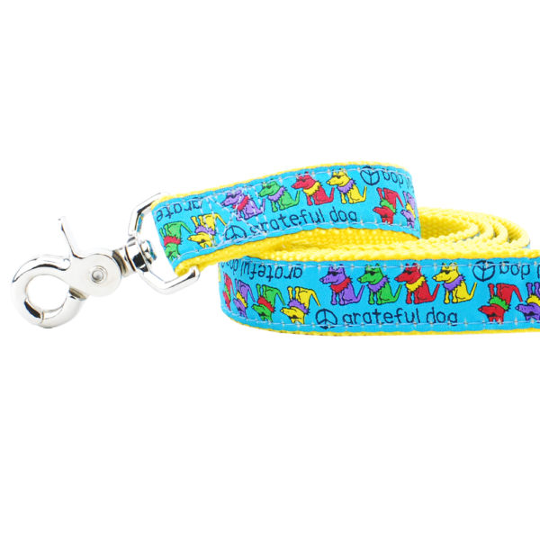 "1"" Grateful Dog Teddy The Dog 5ft Essential Leash"