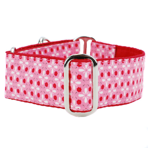 Day in the Park Pink Dog Collar