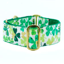 Pot of Gold Dog Collar