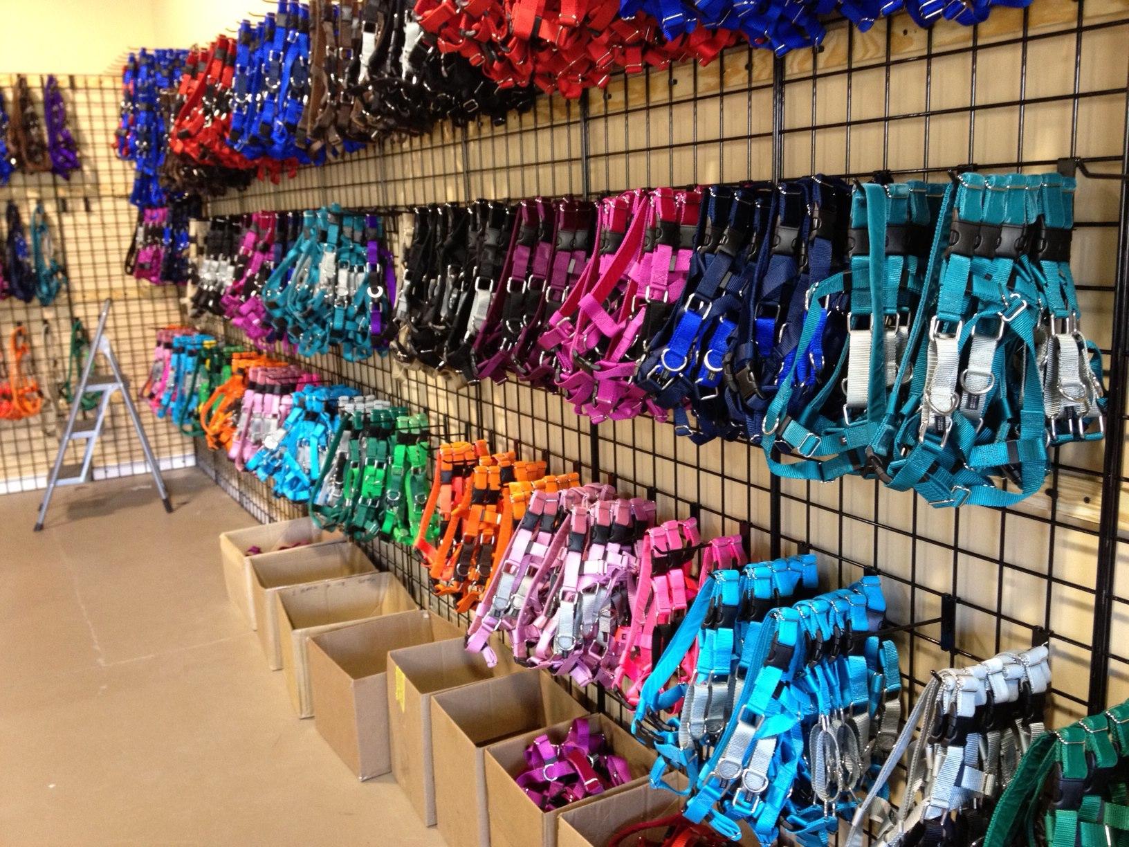 wall of dog collars